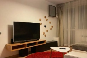 Apartament de lux 2 camere, Dorobanti