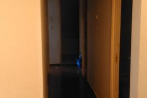 Apartament cu 3 camere în zona Margeanului