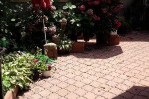 Casa Floreasca,  pretabil locuit/birouri/gradinita/cafenea