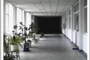 Cladire de birouri  în zona Parcul Carol