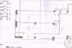 Dristor, sp com cu chiriași,vad comercial, SU 192 mp