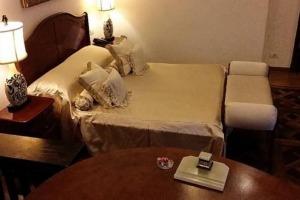 Magheru-Romana! Vila/Hotel  S+D+P+2+M,
