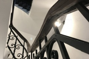 Victoriei Cismigiu 9 camere S+P in vila renovata S+P+1+M